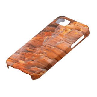 Rock Hoodoos in Morning Light iPhone 5 Case