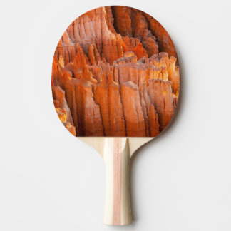 Rock Hoodoos in Morning Light Ping Pong Paddle