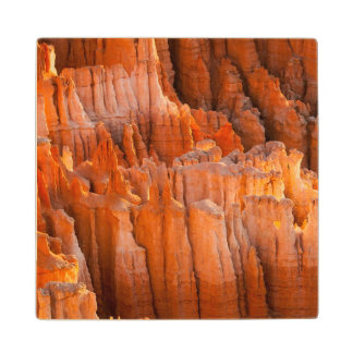 Rock Hoodoos in Morning Light Wood Coaster
