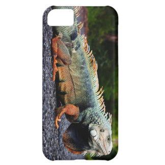 Rock Iguana Cell Case iPhone 5C Case