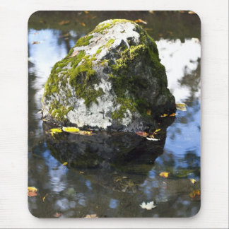 Rock in Pond Mouse Pad