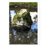 Rock in Pond Postcards