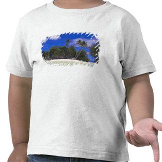 Rock Islands Palau Tee Shirts