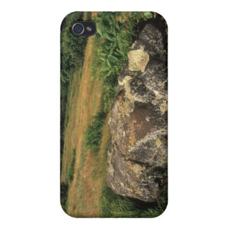 Rock On Hillside iPhone 4 Case