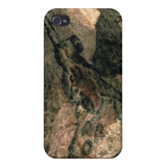 Rock painting of a horned animal, c.17000 BC (cave iPhone 4 Covers
