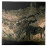 Rock painting of a horned animal, c.17000 BC (cave Tile