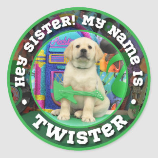 Rock Star Twister (Hey Sister Version) Classic Round Sticker