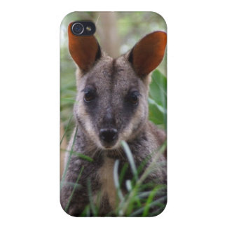 Rock Wallaby iPhone Case Case For iPhone 4