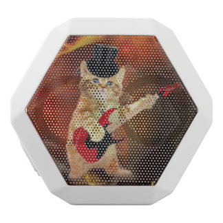 rocker cat in flames