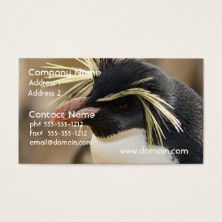 Rockhopper Penguin  Business Cards