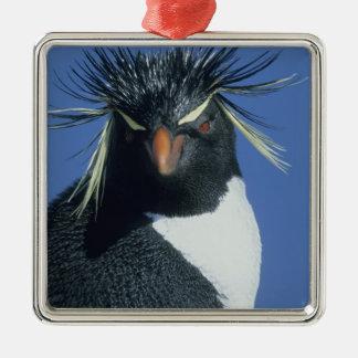 Rockhopper Penguin (Eudyptes chrysocome) Christmas Ornament
