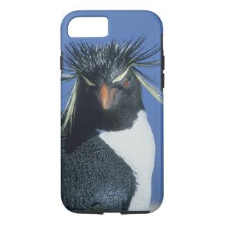 Rockhopper Penguin (Eudyptes chrysocome) iPhone 8/7 Case
