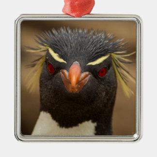 Rockhopper penguin portrait christmas ornament