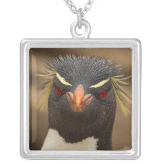 Rockhopper penguin portrait silver plated necklace