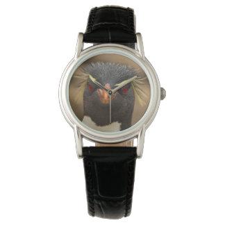 Rockhopper penguin portrait wrist watches