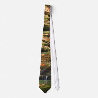 Rocks and  Falls Tie