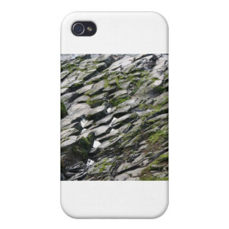 Rocks and Moss iPhone 4/4S Case