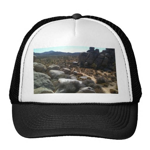 rocks at JT Mesh Hats