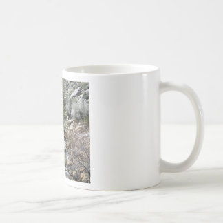 Rocks in the Stream Basic White Mug
