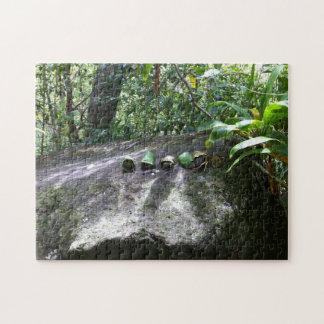 Rocks Wrapped in Ti Leaves, Maui, Hawaii Jigsaw Puzzle
