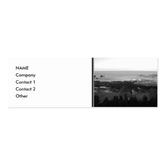 Rocky Beach. Scenic Coastal View. Black and White. Double-Sided Mini Business Cards (Pack Of 20)