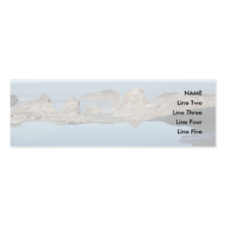 Rocky Beach. Scenic Coastal View. Pack Of Skinny Business Cards