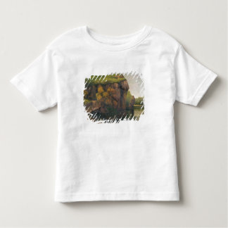 Rocky Cliffs Toddler T-Shirt