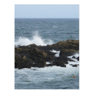 Rocky Coast in York Maine Postcard