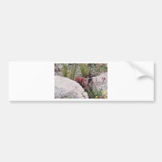 Rocky Ground Bumper Sticker