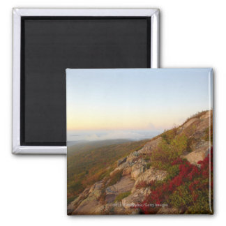Rocky Hillside, Red Flowers, Acadia National Park Magnet