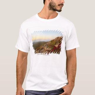 Rocky Hillside, Red Flowers, Acadia National Park T-Shirt