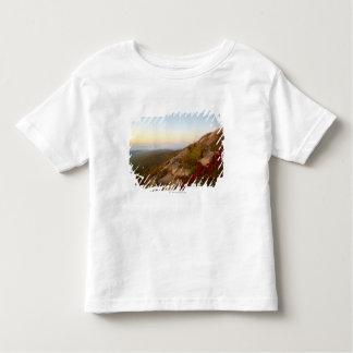 Rocky Hillside, Red Flowers, Acadia National Park Toddler T-Shirt