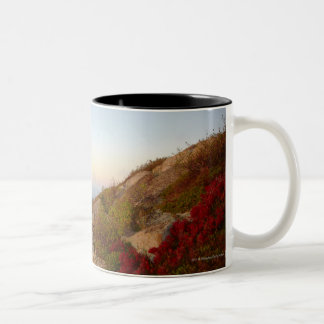 Rocky Hillside, Red Flowers, Acadia National Park Two-Tone Coffee Mug