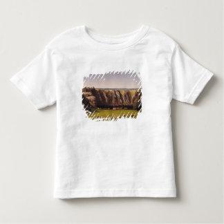 Rocky landscape near Flagey Tee Shirt