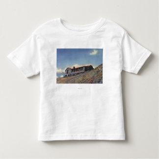 Rocky Mnt. Nat. Park, CO T-shirts