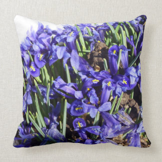 Rocky Mountain Blazing Star Pillow
