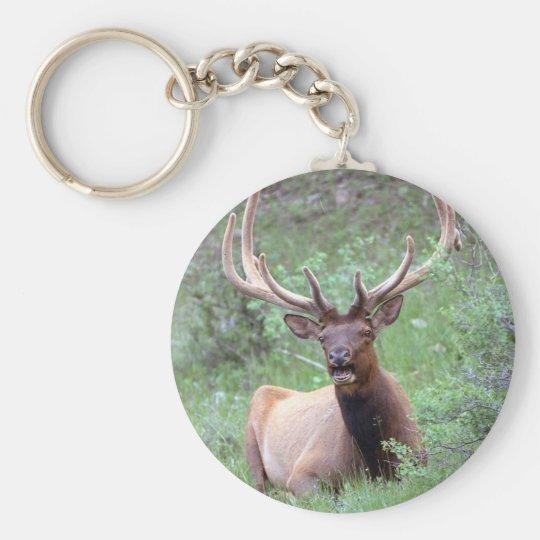 Rocky Mountain Elk Basic Round Button Key Ring