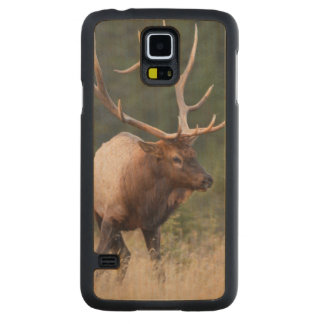 Rocky Mountain Elk Carved Maple Galaxy S5 Case