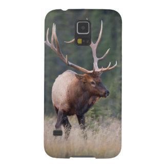 Rocky Mountain Elk Galaxy S5 Cover