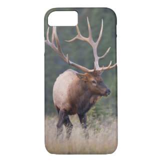 Rocky Mountain Elk iPhone 8/7 Case