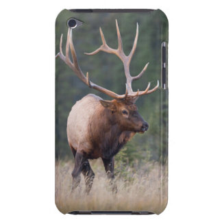 Rocky Mountain Elk iPod Touch Case-Mate Case