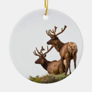Rocky Mountain Elk Ornament
