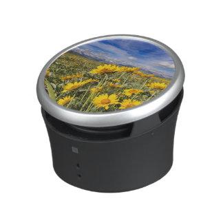 Rocky Mountain Front Range Bluetooth Speaker