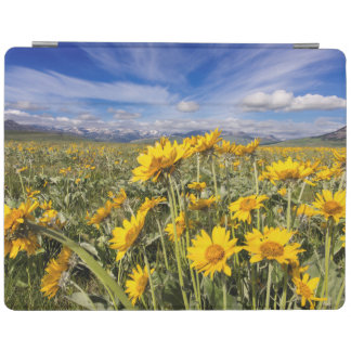Rocky Mountain Front Range iPad Cover
