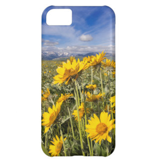 Rocky Mountain Front Range iPhone 5C Case
