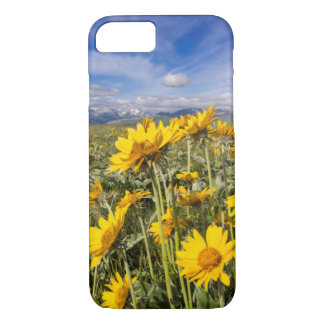 Rocky Mountain Front Range iPhone 8/7 Case
