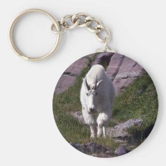 Rocky mountain goat basic round button key ring