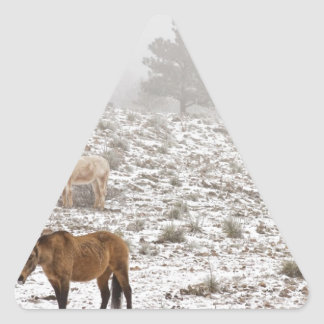 Rocky Mountain Horses Snow and Fog Triangle Sticker