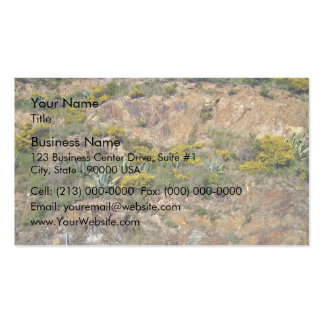 Rocky mountain landscape with bushes business card templates
