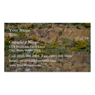 Rocky mountain landscape with bushes business card template